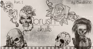 Skull Brushes Part 1 By Canelita309