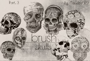Skull Brushes Part 3 By Canelita309 by SriitaDeWatt