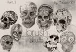 Skull Brushes Part 3 By Canelita309