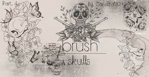 Skull Brushes Part 4 By Canelita309