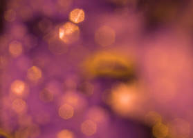 bokeh purple and gold by erykucciola-sToCk
