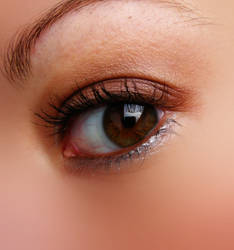 eye 29
