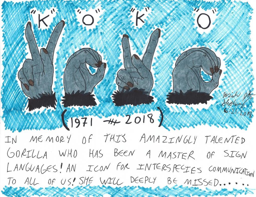 Signs of Koko [Tribute, 6-21-2018] by JCSStudio