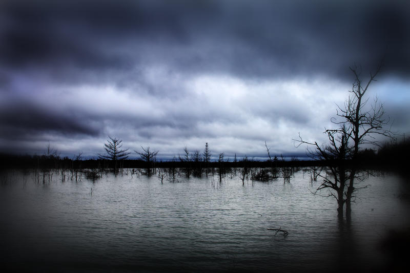 Flood Waters by S-H-Photography