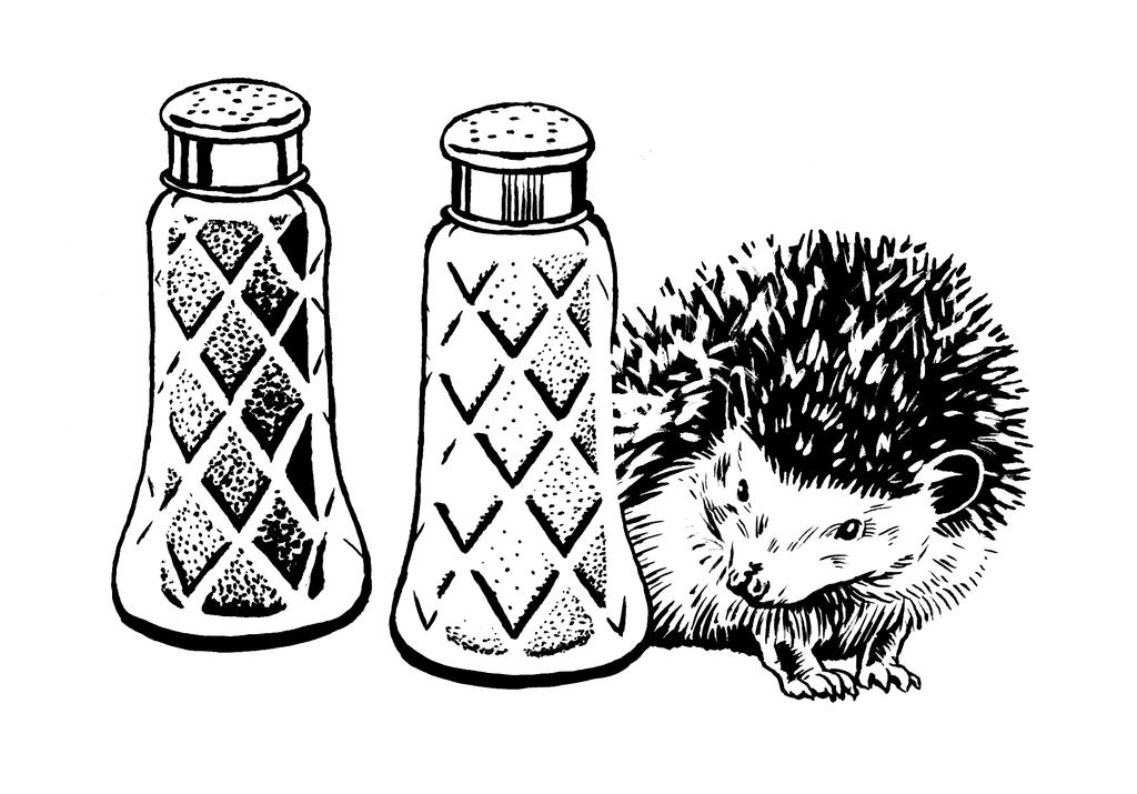 Hedgehog And Salt And Pepper Shakers By Mlauritano On