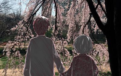 [wallpaper] Cherry Blossom, Always