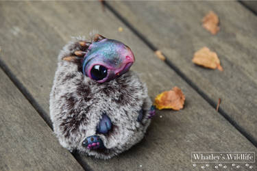 Poseable OOAK Art Doll - Moss - Dragon Hatchling by whatleyswildlife