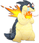 Typhlosion's fashion disaster