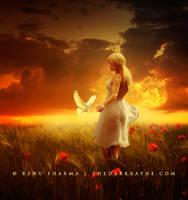 Dream of Harmony by TheDarkRayne