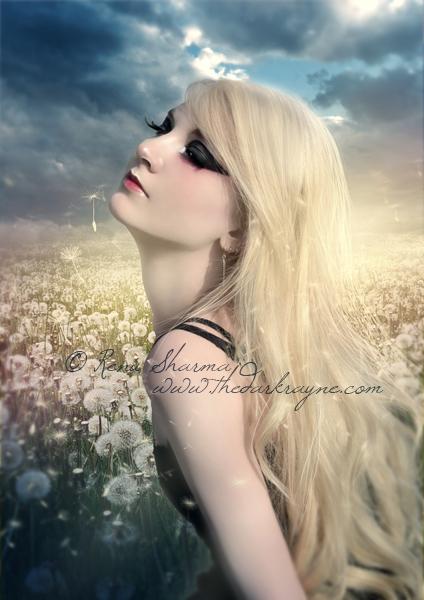 Dandelions by TheDarkRayne