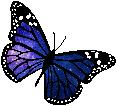 Cosmic Butterfly (2) by HystericalVixen