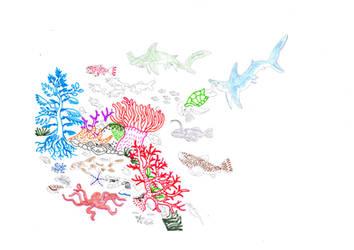 fauna costiera della barriera corallina by asari13