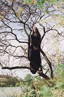 Dark Crow by AlexandraSophie