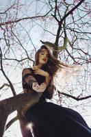 Dark crow ii by AlexandraSophie