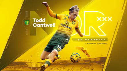 Todd Cantwell (Norwich City)