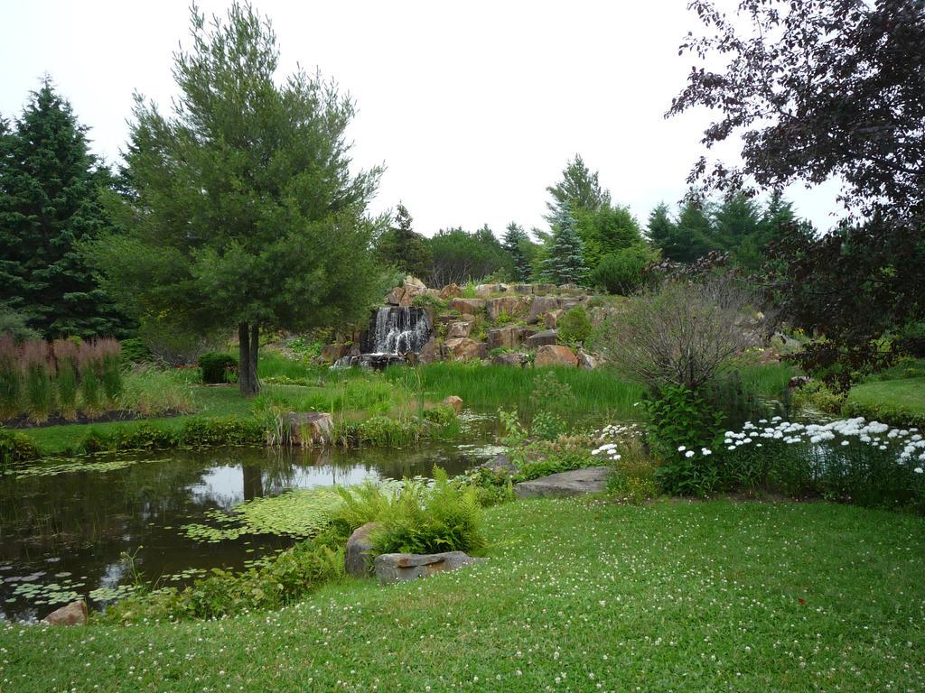 Jardin botanique1 by Phenixia