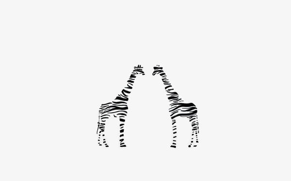 ZebraStriped Giraffe Wallpaper By Tacostandwallpapers On DeviantArt