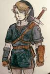 The Legend of Zelda Twilight Princess: Link