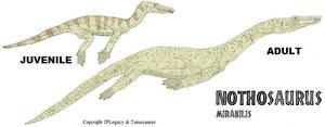LtL Nothosaurus by Tomozaurus
