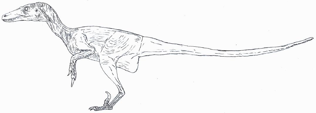Nudist Velociraptor lineart by Tomozaurus