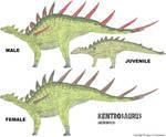 LtL Kentrosaurus