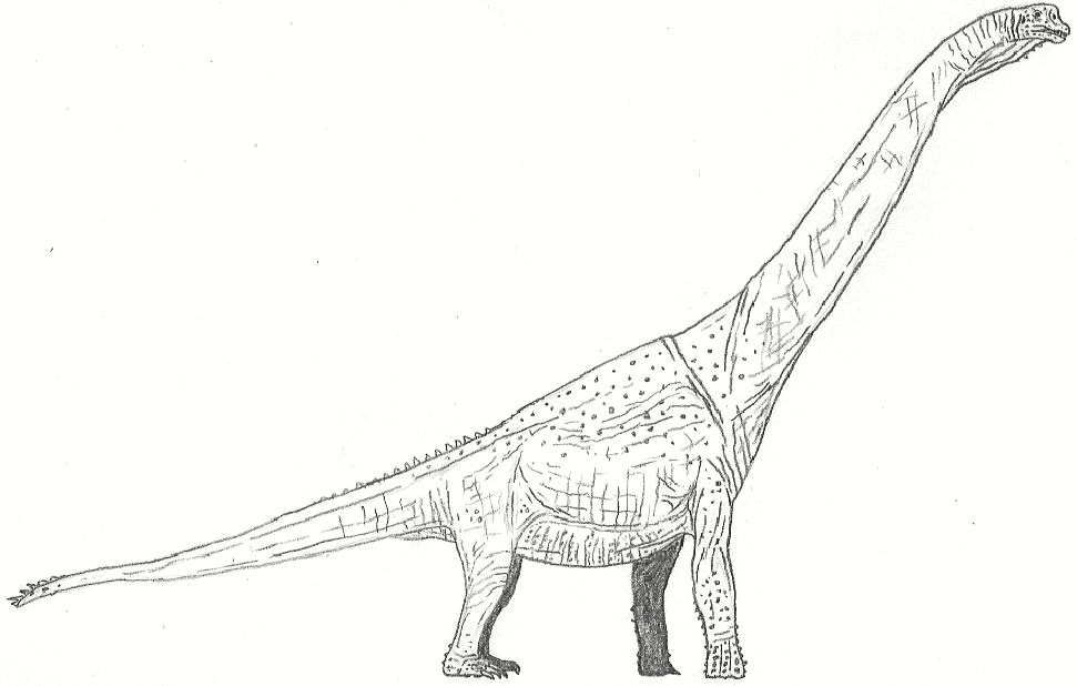 Stock Brachiosaurus by Tomozaurus