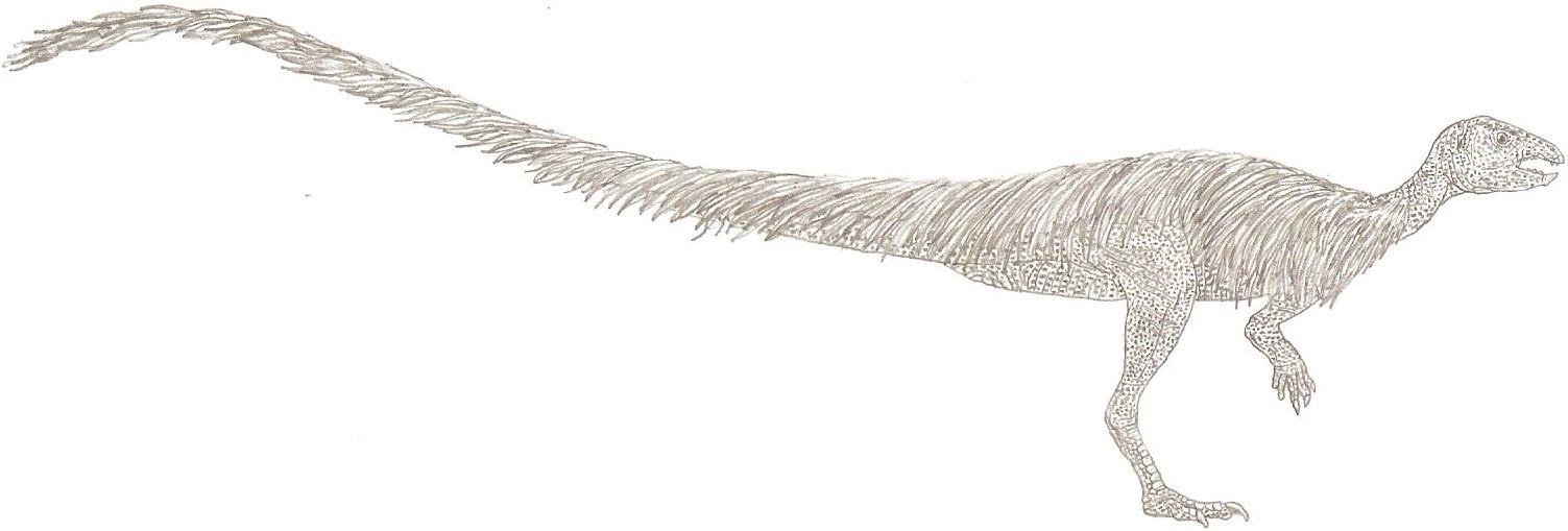 albertonykus 15 1 leaellynasaura amicagraphica by tomozaurus