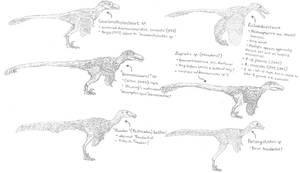 Hell Creek Deinonychosauria revision sketch dump