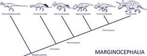 DinoPhylo Made Easy - #1 Marginocephalia