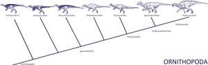 DinoPhylo Made Easy - #2 Ornithopoda