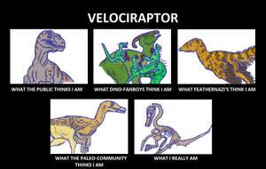 Velociraptor's Image by Tomozaurus