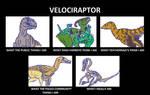 Velociraptor's Image