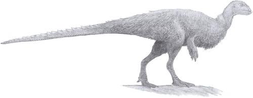 Mountain Runner by Tomozaurus