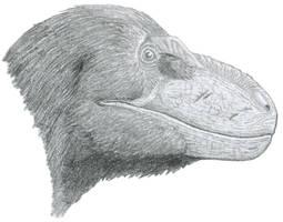 Sketchy Nanuqsaurus by Tomozaurus