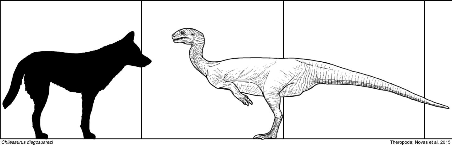 Chilesaurus by Tomozaurus