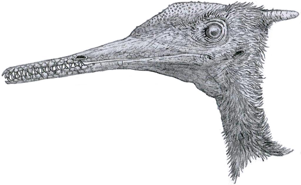 Aerodactylus portrait by Tomozaurus