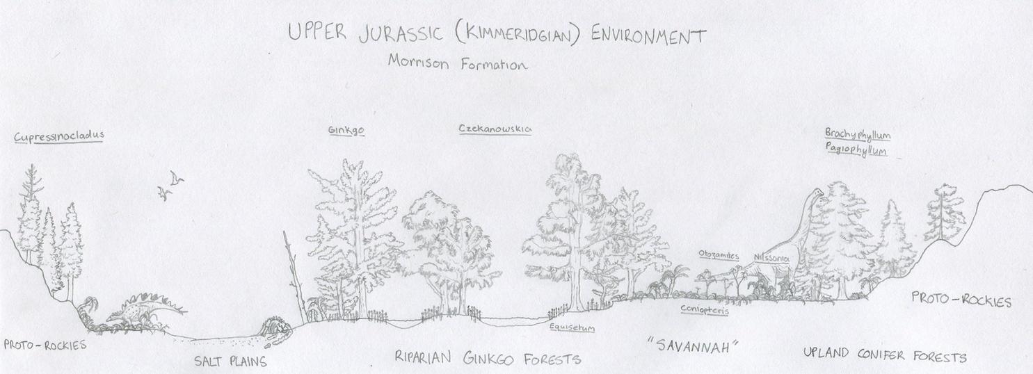 Morrison Kimmeridgian Environment Diagram (sketch) by Tomozaurus