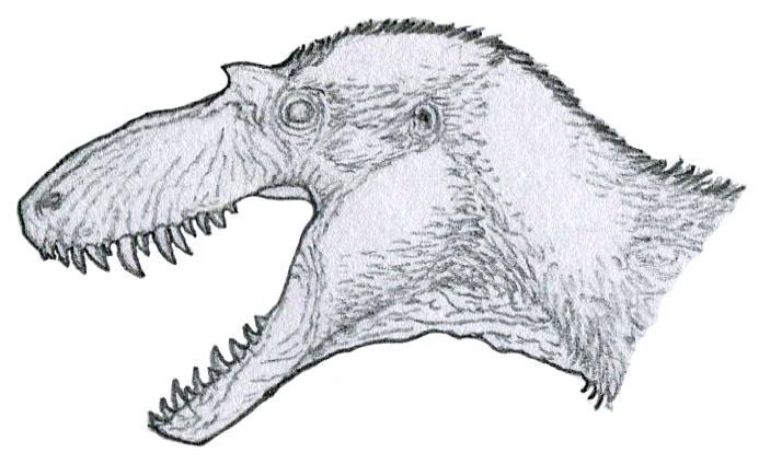 Gorgosaurus sketch by Tomozaurus