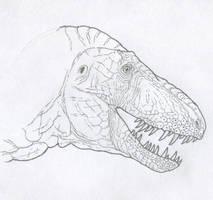 Daspletosaurus horneri, Carr version (raw sketch) by Tomozaurus