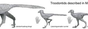 2017 Troodontids