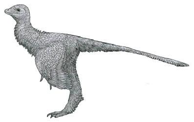 Silky Bird by Tomozaurus