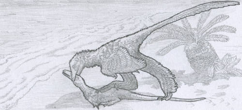 Sketch: Ostromia by Tomozaurus