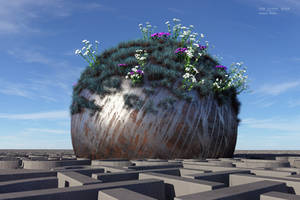 flowers in fractal land