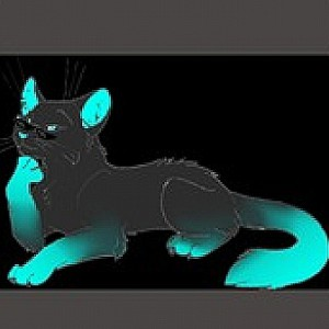Rainbowcat123456's Profile Picture