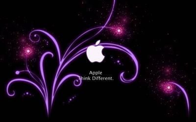 simply mac II