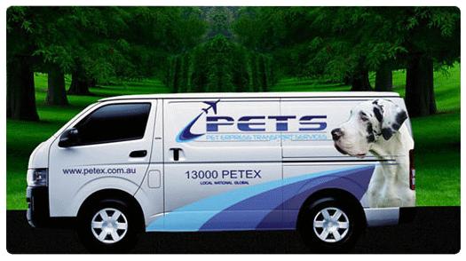 Transportpet explore transportpet on deviantart pet relocation by petexau sciox Gallery