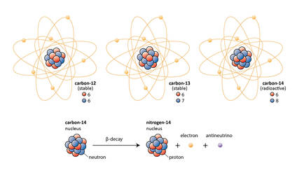 Carbon Isotopes and Beta-decay