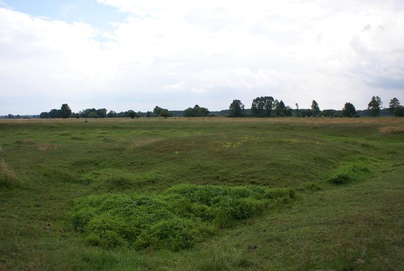 landspace 6