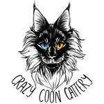 Crazy Coon Cattery