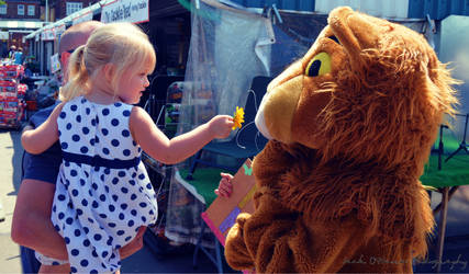 Little Girl Shows Leo The Lion A Flower